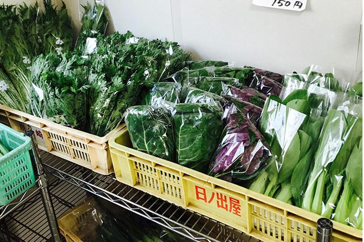 志村農園の野菜